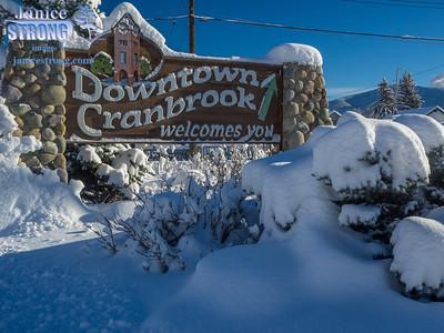 Cranbrook-Snow-9610