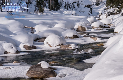 Winter-2014-3003