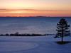 SC 295 Maine Ocean Viuew with Tree