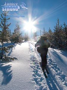 3969 Dan Climbing Sunburst