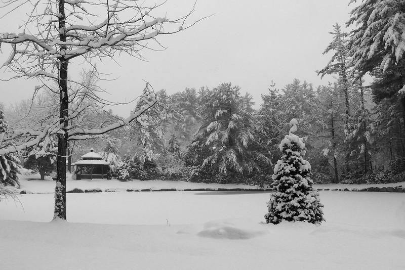 SC 290 Morins in Winter 079