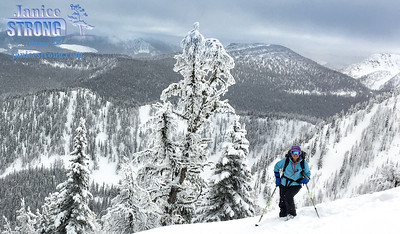 Backcountry- Skiing Purcells