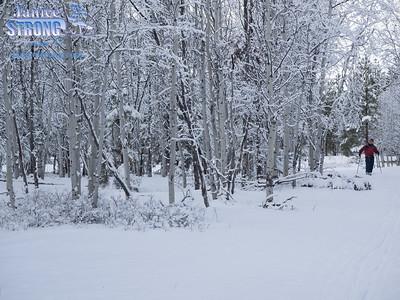 Wycliffe Ski Trails X-C-Ski-3028