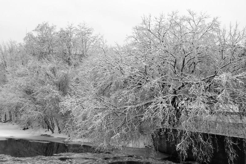 SC 120 Ice Storm
