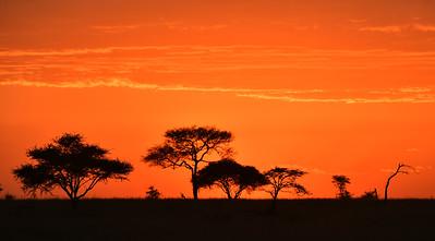 NEA_1070-African Sunset