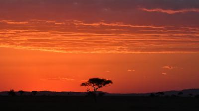 NEA_1072-African Sunset