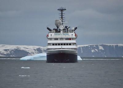 ANT_1806-7x5-Corinthian-Iceberg