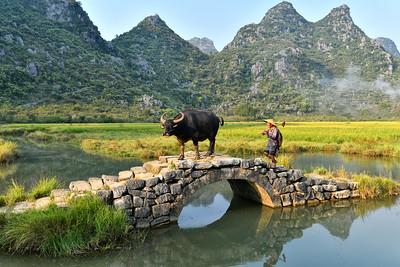 CHI_0402-Farmer on Bridge
