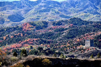 CHI_4340-Great Wall-Fall Color