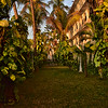 IND_3106-7x5-Hotel garden