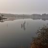 IND_4304-7x5-Foggy Morning