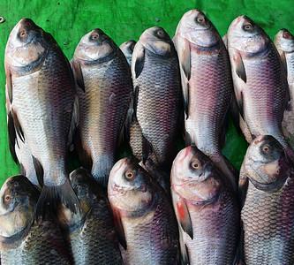 MYA_2827-Fish Market