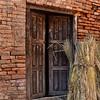 NEP_3526-7x5-Door-Rice stalks
