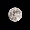 NEP_2049-7x5-Moon over Pokhara
