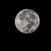 NEP_2329-7x5-Moon