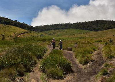SRI_1553-7x5-Joe-Ruth-Trail