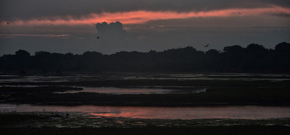 SRI_0632-Sunrise-Reflection
