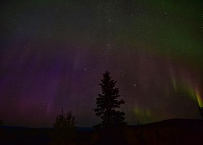 NEA_5332-7x5-Northern Lights