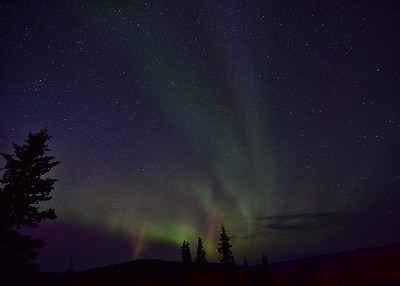 NEA_5309-7x5-Northern Lights