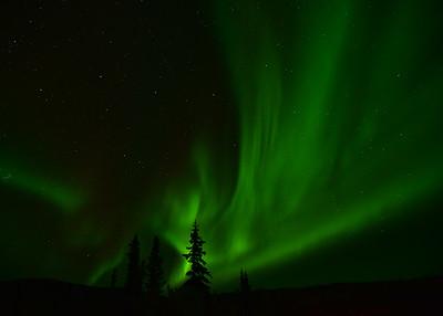 NEA_4983-7x5-Northern Lights