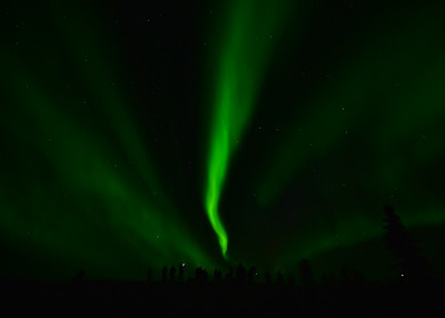 NEA_4968-7x5-Northern Lights