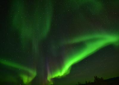 NEA_5029-7x5-Nothern Lights
