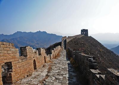 NEA_1312-7x5-Wild Wall