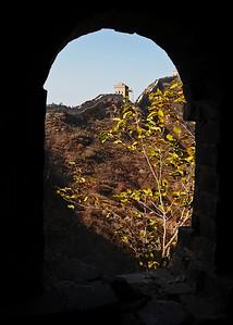 NEA_1373-5x7-Wild Wall Arch
