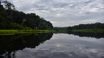ECQ_1029-Amazon-Early Light Reflection