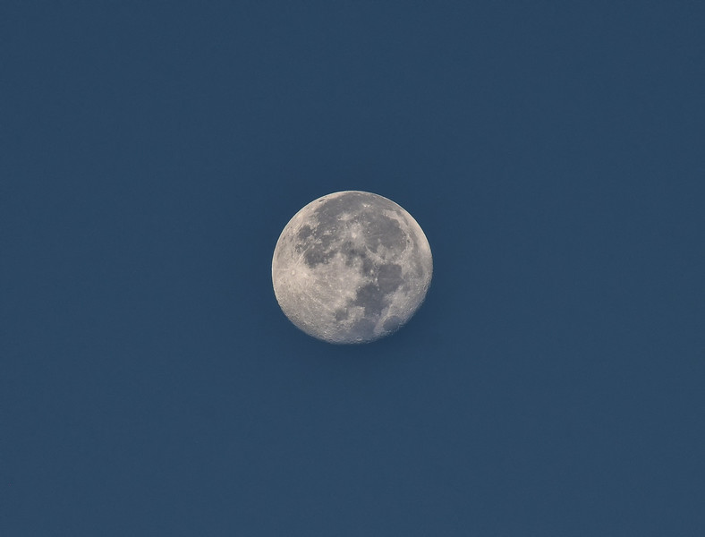 ECQ_5073-Moon