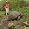 ECQ_4515-Ruth-Tortoise