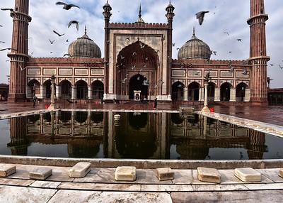 IND_0019-7x5-Mosque w Birds