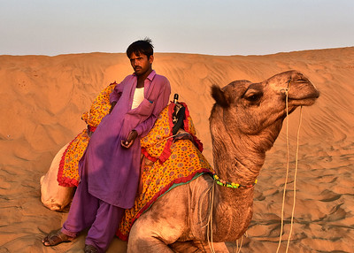 IND_1714-7x5-Camel Driver