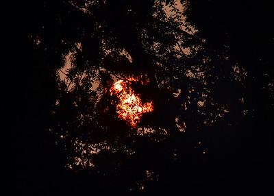 NEP_0007-7x5-Sunrise