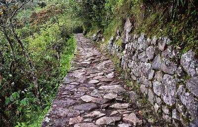 ECQ_5826-Inca Trail