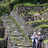 ECQ_6128-Linnea-Larry-Inca Trail