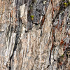 ECQ_6000-Rock Wall