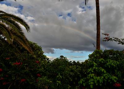 EAS_1126-7x5-Rainbow