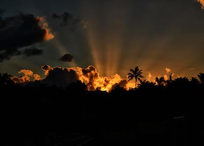 EAS_2409-7x5-Easter Is-Sunrise