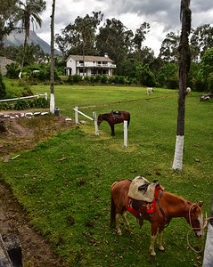 ECQ_0104-Hacienda Pinsaqui