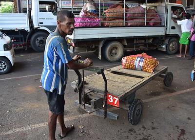 SRI_1359-7x5-Man w Cart