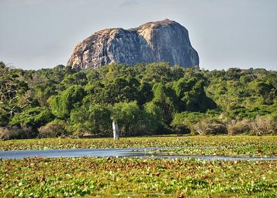 SRI_0826-7x5-Elephant Rock