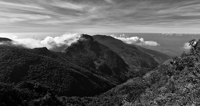 SRI_1512-Horton Plain-Worlds end-BW