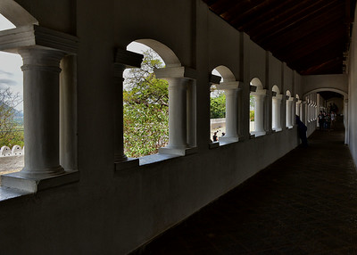 NEA_0506-7x5-Columns