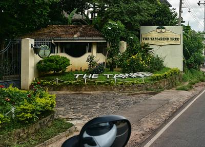 NEA_0438-7x5-Hotel Tamarind Tree