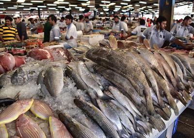 SRI_3659-7x5-Fish Market