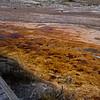 Biscut Basin