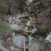 Yellowstone NP Lower falls and Canyon