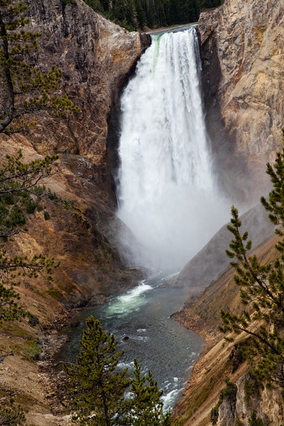 Yellowstone NP Lower falls and Canyon