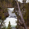 Yellowstone NP Upper Falls